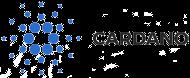 Großes Logo von Cardano