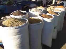 Bild zeigt eine Reihe Säcke voller Getreide, Reis und weiterer Rohstoffe